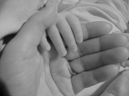 Webinar: Meine Heilkraft für ihr Kind
