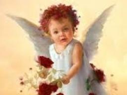 Webinar: ♥❀♥ Botschaft aus deinem Seelengarten ♥❀♥
