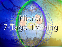 Webinar: Nieren 7-Tage-Training