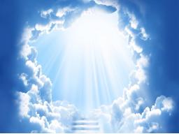 """Webinar: """"Jesus und die Gute Nachricht"""""""