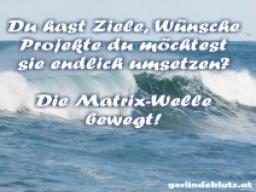 Webinar: Die Matrix-Welle bewegt!