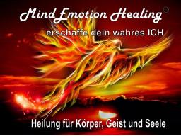 Webinar: MindEmotion Healing - Heilung f. Körper, Geist & Seele