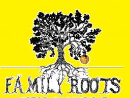 Webinar: KOMPLETT-WORKSHOP: EGO-IMPLANTATE IN DEINER FAMILIENGESCHICHTE- DNA-TRANSFORMATION