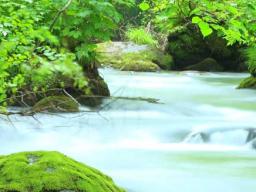 Webinar: Wasser segnen
