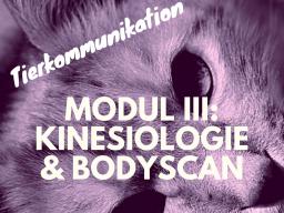 Webinar: Tierkommunikation Modul 3: Kinesiologie und Bodyscan