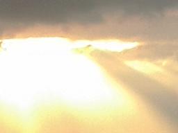 Webinar: Dein Wirken im Licht - spirituelle Heilkraft erhöhen in DIR mit Mutter Maria, Erzengel Michael und LashMaEl