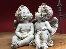 Webinar: Der nicht geborene Zwilling