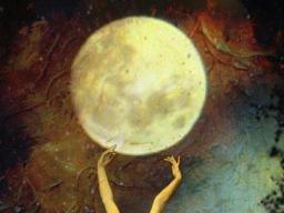 Webinar: Woman Rise & Shine Vollmond Prozess