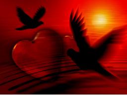 Webinar: Wo steht Ihre Liebe / Partnerschaft