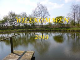 Webinar: 2019 - kostenloses LIVE JAHRES -CHANNELING mit Sabine Richter