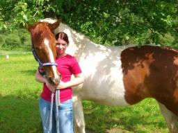 Webinar: Infowebinar Ausbildung Spiritiueller Tierheiler