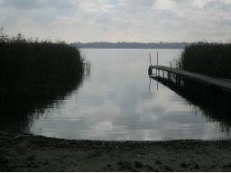 Webinar: Das schamanische Wasserseminar - Nachbericht