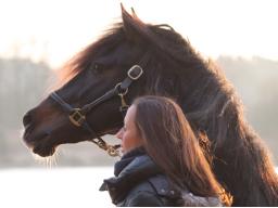 Webinar: Tierkommunikation - Fragen & Antworten