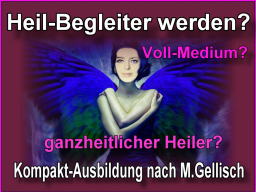 Webinar: medialer Heil-Begleiter werden -6- nach M.Gellisch