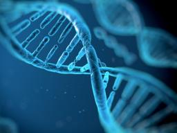 Webinar: ✩ Ra-Sheeba ✩ DNA-Änderung ✩