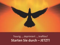 Webinar: Wie Phönix aus der Asche!