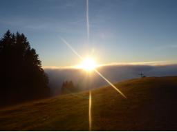 Webinar: Mit Jesus und den Engeln durch das Jahr: Seid im Licht!