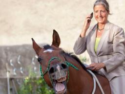 Webinar: Pferde würden von Profis kaufen - wie Sie mit Ihrer Energie Menschen und Tiere überzeugen können