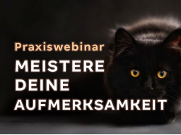 Webinar: Das Geheimnis aller Methoden: Meistere deine Aufmerksamkeit!