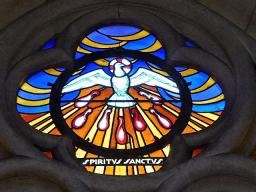 Webinar: Jesus, Maria Magdalena und das Mysterium des Blutes