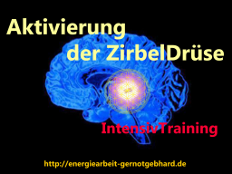 Webinar: Aktivierung der ZirbelDrüse