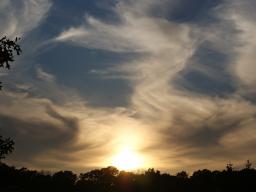 Webinar: Seelenschaukel-Zeit: Der Engel an deiner Seite