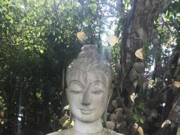 Webinar: Mantra Meditation  für Geldfluss und gutes Gelingen im Alltag