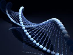 Webinar: DNA MATRIX Programmierung Einzeltermin