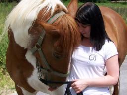 Webinar: ♥♥♥Spirituelle Tierheiler Programm-persönliche Einstimmung♥♥♥