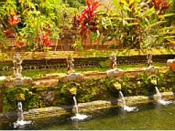 Webinar: Persönliche Fernheilung mit Balispirit - dein Weg in Fülle und Freiheit