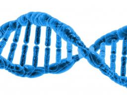 Webinar: Verjüngung und Umstrukturierung Deiner DNA über die Verschmelzung Deines Lichtabdruckes in Lemurien