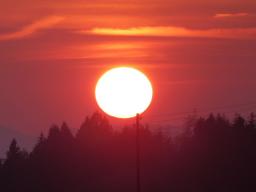 Webinar: Mit Jesus durch das Jahr - Christi Himmelfahrt: 'Vereint Himmel und Erde durch euch'!