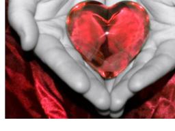 Webinar: wie geht es in der Liebe weiter