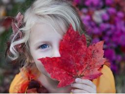 Webinar: DIE SCHAMANISCHE SEELEN-REISE - FERNHEILUNG für Kinder von 8 - 14