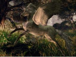 Webinar: Seelenritt auf dem goldenen Pegasus
