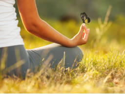Webinar: Transformativer Yoga Retreat mit Meditationsreise &  individueller Heilarbeit