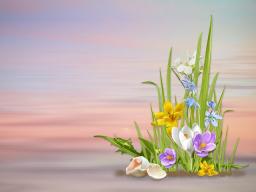 Webinar: Osterchanneling mit Einweihungsmeditation