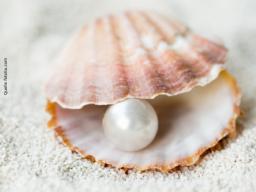 Webinar: Dein Heiltyp als Basis für deine Berufung