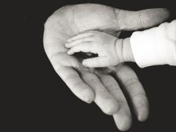 Webinar: VortexHealing® Energy Healing - Klärung der Vaterverbindung - 70 Minuten