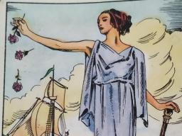 Webinar: Online Beratung Zigeunerkarten