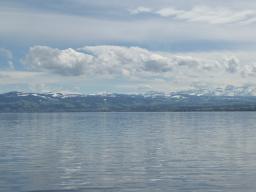 Webinar: Die Wasserjungfrauen harmonisieren unsere Haut und unsere energetischen Felder