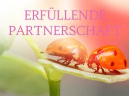Webinar: ERFÜLLENDE PARTNERSCHAFT 2