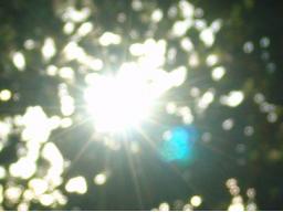 Webinar: der Sonnenweg durch das Sternbild der Waage