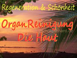 Webinar: OrganReinigung-Deine Haut   ..musikfrei