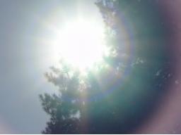 Webinar: Wintersonnenwende, Beginn der Rauhnächte, Sonne im Steinbock